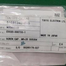 TOKYO ELECTRON ES020-00733-1 SCREW, CAP..M6*25 SUS304,. NEW